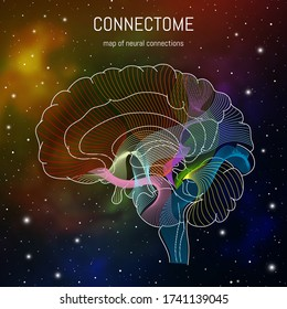 Brain cells connectome concept.Neural network, neurons forming a complex map for mind and thinking.  Neuroscience infographic on space background.