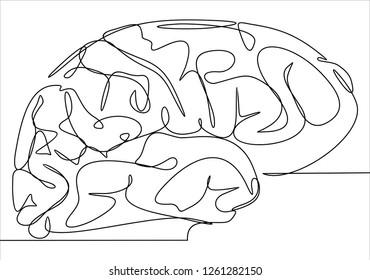 Brain. Continuous line