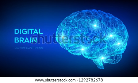 Brain Digital brain 3D