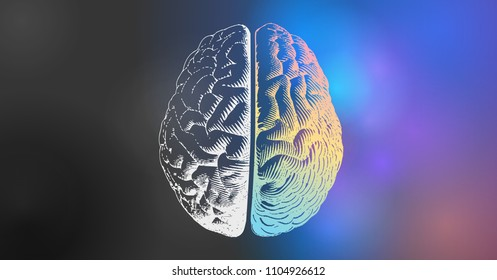Brain engraving drawing illustration in top view with left and right functions concept on colorful and black space background