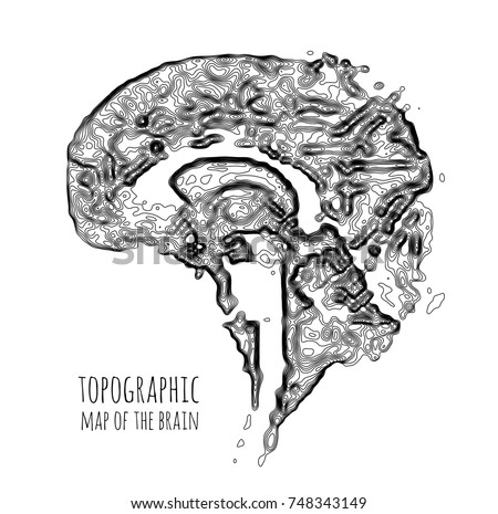 Brain Form Topographic Map Concept Modern Stock Vector Royalty Free