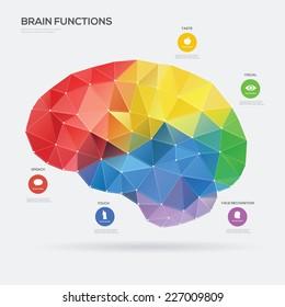 Brain Function concept. Vector illustration