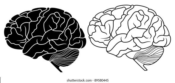 brain silhouette images  stock photos  u0026 vectors