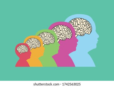brain of kids in different ages flat vector - brain development concept