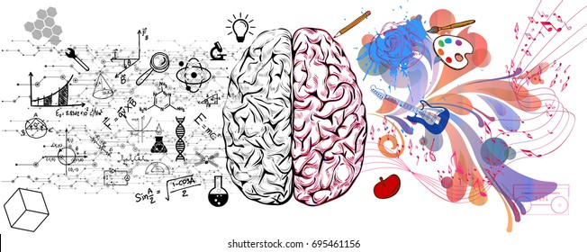 Brain left analytical and right creative hemispheres concept vector illustration