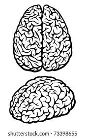 Brain. Set of Two Views. Vector Illustration