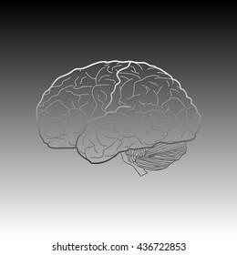 Brain sign illustration. Gradient icon on gradient background.