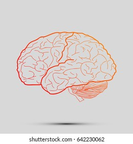 Brain sign illustration. Vector. Orange, red-yellow icon with shadow on gray background.