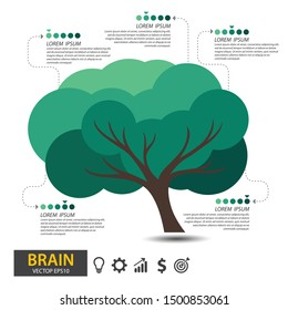 Brain tree design. infographic template for presentation. vector illustration.