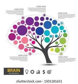 Brain tree design. infographic template for presentation. vector illustration.