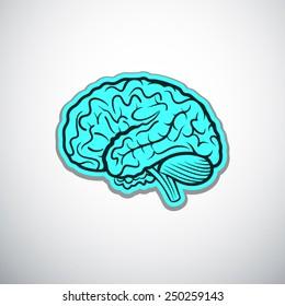 brains outline blue colored vector illustration