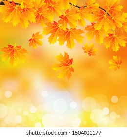 Branch with autumn leaves on bokeh background, vector art illustration.