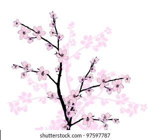 фотообои Branch of beautiful seasonal pink cherry blossom