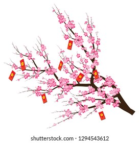 Branch of Blooming Peach blossoms with red envelops hanging on - vector