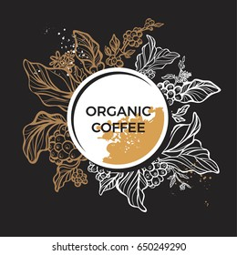 Branch of coffee tree with leaves, flowers and coffee beans. Botanical drawing in circle. Floral decor for organic product. Vector illustration for template, menu, background