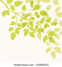 Branch with green leaves. Floral background