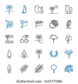 branch icons set. Collection of branch with viburnum, tree, palm tree, laurel, pine tree, cherry, acorn, sloth, dove, leaf, pigeon, olive oil. Editable and scalable branch icons.