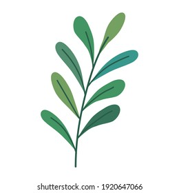 branch with leafs plant decorative seasonal icon vector illustration design
