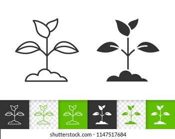 Branch Leaves black linear and silhouette icons. Thin line sign of sprout. Grass outline pictogram isolated on white, green transparent backdrop. Vector Icon shape. Branch Leaves simple symbol closeup