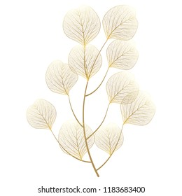 Branch with leaves isolated. Vector illustration.