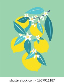 Branch of lemons with leaves. Vector illustration