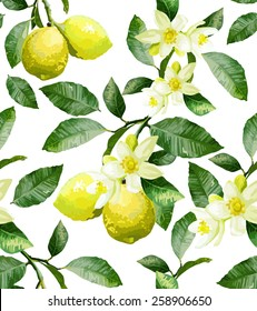The branch with lemons on a white background