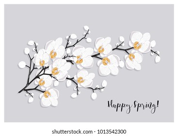 "a branch of white orchid flowers on light grey background with sample text message ""happy spring""; also generic template (wedding invitation, birthday, mother's day greeting card); vector illustration"