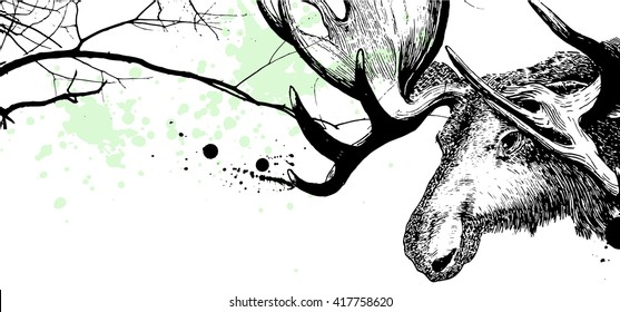 Branches and moose vector