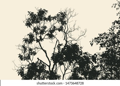 branches silhouette. detailed vector illustration