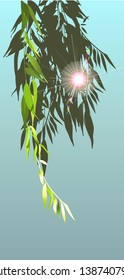 Branches of willow and sun rays on a blue background. Vector illustration.