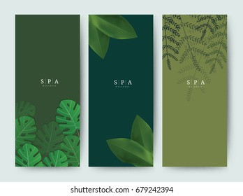 Branding Packaging palm Tropical tree leaf nature background, logo vertical banner voucher, spring summer, vector illustration