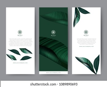 Branding Packaging tropical plant leaf summer pattern background, for spa resort luxury hotel, logo banner voucher, fabric pattern, organic texture. vector illustration.