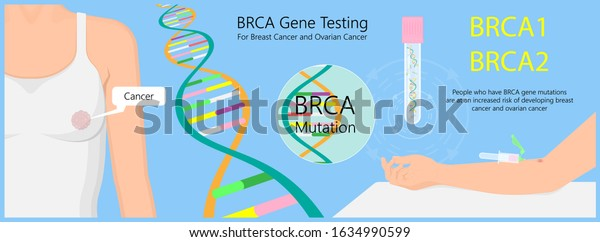 Brca Gene Test Breast Ovarian Cancer Stock Vector Royalty Free 1634990599