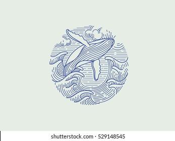 breaching humpback whale logo.