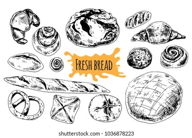 Bread vector hand drawn set illustration. Different of wheat, flour fresh bread. Gluten food bakery engraved collection. Black bake organic food isolated on white background.
