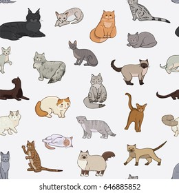 Breeds of cats vector line doodle seamless pattern