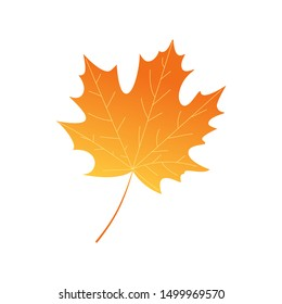 Bright autumn leaf. Cartoon style. Vector design.