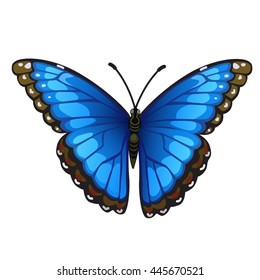 Bright butterfly isolated on white background. Vector illustration.