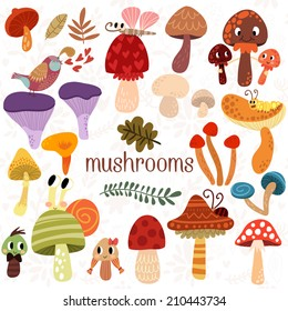 Bright different types of mushrooms  set in vector. Tasty card in cartoon style on white background
