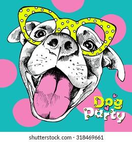 明亮的节日海报与一个有趣的狗眼镜的形象. 矢量插图。