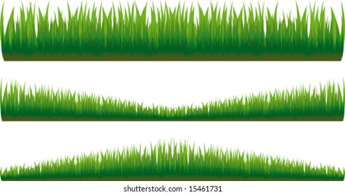 Bright grass. An illustration. Isolation on white.