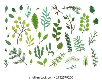 Bright green and blue sketch herbs, leaves and branches collection. Watercolor botanical elements isolated on white background for print design, surface decoration