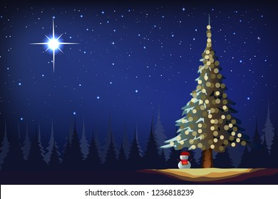The bright and morning star in night winter Christmas and pine tree graphic vector.