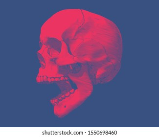 Bright red engraving drawing human skull open mouth jaw side view illustration isolated on deep blue background