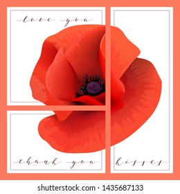 Bright red Poppy set of cards with words love you, thank you, kisses. Papaveroideae background. 3 in 1 poster, invitation card, greetings, business card. For decoration, packing, wrapping, prints
