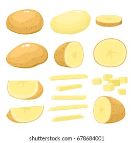 Bright vector collection of colorful half and whole of potato. Fresh cartoon different vegetable isolated on white background used for magazine, book, poster, card, menu cover, web pages.