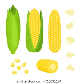 Bright vector collection of colorful yellow corn. Fresh cartoon organic vegetable isolated on white background used for magazine, book, poster, card, menu cover, web pages.