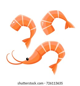 Bright vector illustratin of seafood isolated on white. Fresh cartoon shrimps used for magazine, book, poster, card, menu cover, web pages.