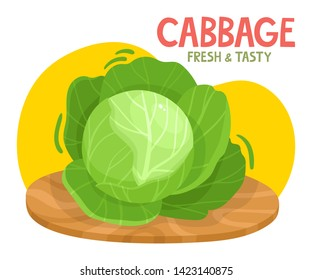 Bright vector illustration of colorful cabbage. Fresh cartoon organic vegetable with name isolated on white background used for magazine, book, poster, card, menu cover, web pages.