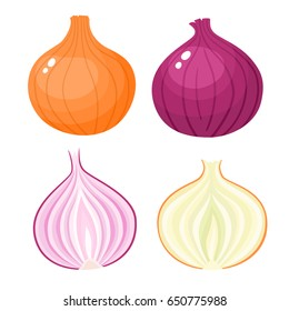 Bright vector illustration of colorful half, slice and whole of onion. Fresh cartoon vegetable isolated on white background. Illustration used for magazine, book, poster, card, menu cover, web pages.